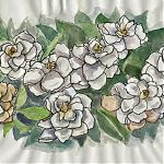Gardenias
